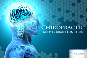 Chiropractics Boost Brain Function